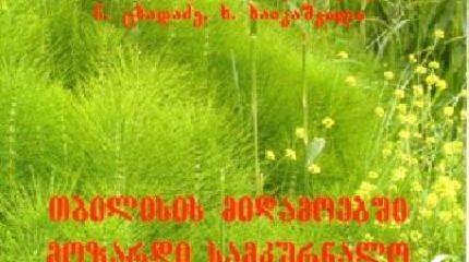 თბილისის მიდამოებში მოზარდი სამკურნალო სარეველა მცენარეები, რ. ბიძინაშვილი, მ. ელბაქიძე, ნ. ცხადაძე, ხ. ხაიკაშვილი