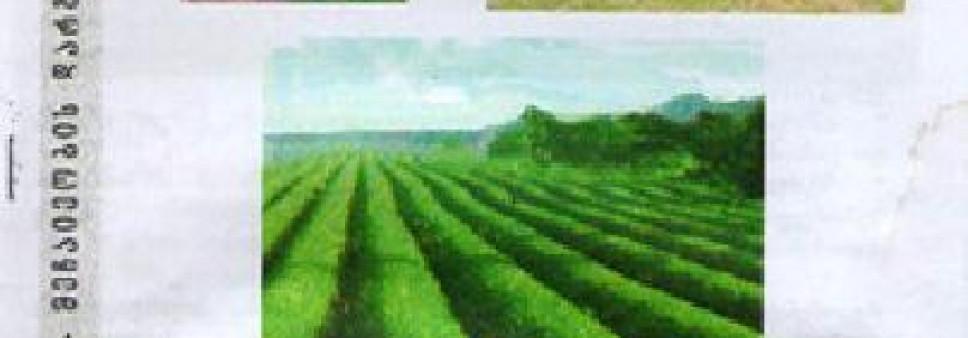 ჩაის პლანტაციების რეაბილიტაციის ტექნიკური საშუალებები