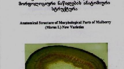 თუთის ახალი ჯიშების მორფოლოგიური ნაწილების ანატომიური სტრუქტურა