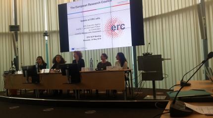 ევროპული კვლევების საბჭოს ეროვნული საკონტაქტო პირების მე-20 შეხვედრა