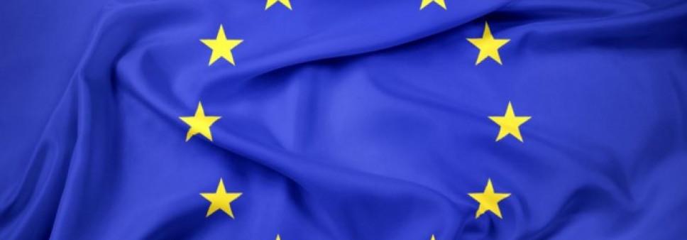 """შოთა რუსთაველის საქართველოს ეროვნული სამეცნიერო ფონდი ავრცელებს ინფორმაციას ევროკავშირის მიერ დაფინანსებული ,,Twinning"""" - ის პროექტის ფარგლებში ვაკანსიის შესახებ"""